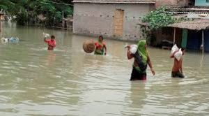 Natural hazards and other related aspects of Bihar