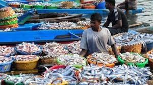 Fishing of Bihar